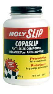 Copaslip – Anti- saisie
